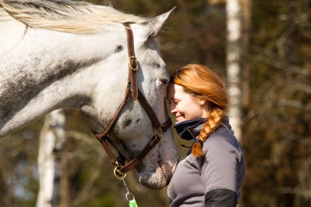 Hevoset, Tunne Yhteys-kurssit
